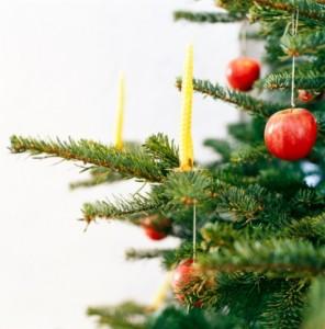 Sapin de Noël pas cher