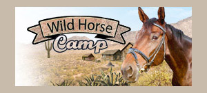 Wild Horse Camp