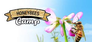 Le Honeybees Camp