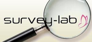 Survey Lab, le bureau d'études de vente-privee.com